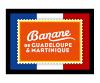 Partner Banane de Guadeloupe & Martinique